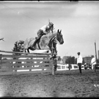 Horse jump at Worcester Fairgrounds