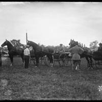 Horse drawn carts at the New England Fair