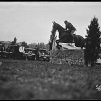 Horse jumping at the New England Fair