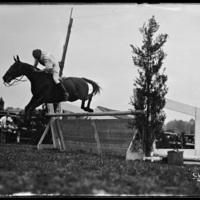 Horse jumper at the New England Fair