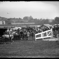Horse drawn carts at the New England Fair