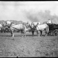Horse drawn carriage of the B.H. Alden Coal Co., Worcester