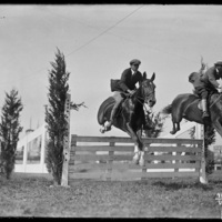 Horse jumpers at the New England Fair, Worcester