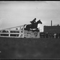 Horse jumper at  New England Fair