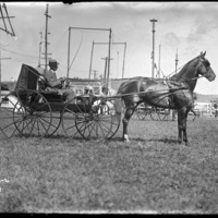 Man in a horse drawn cart
