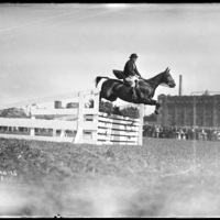 Horse jumper at the Worcester Fair