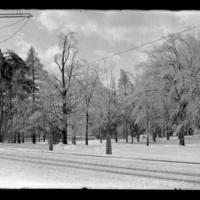 Winter scene in Worcester