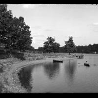 Shore of Lake Quinsigamond